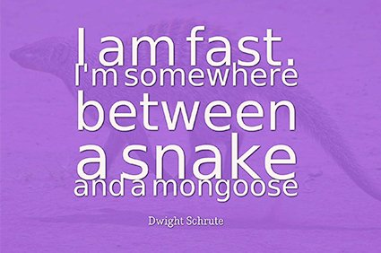 i am fast. i'm somewhere between a snake and a mongoose. dwight schrute the office