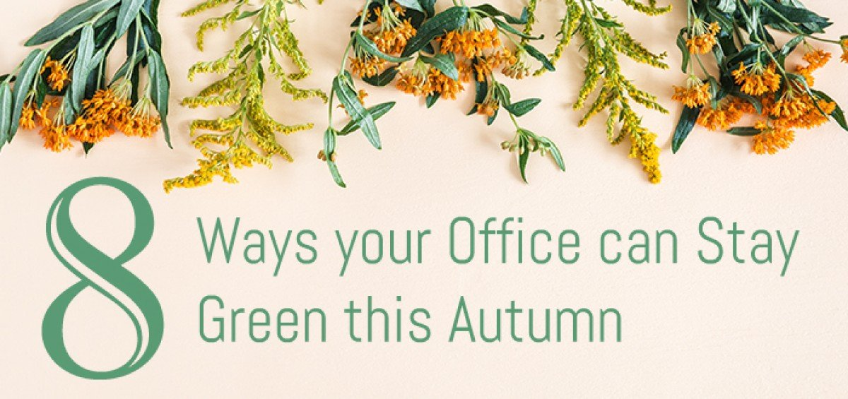 Eight Ways Your Office Can Stay Green This Fall