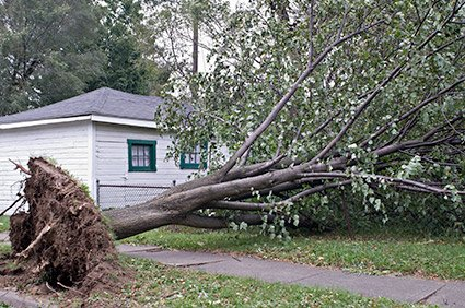 Preparing File Storage for Tornado Disasters