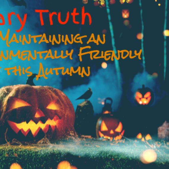 the scary truth about maintaining an environmentally friendly office this autumn